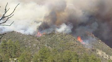 The Gladiator Fire near Crown King, Ariz. By Mike Gertzman