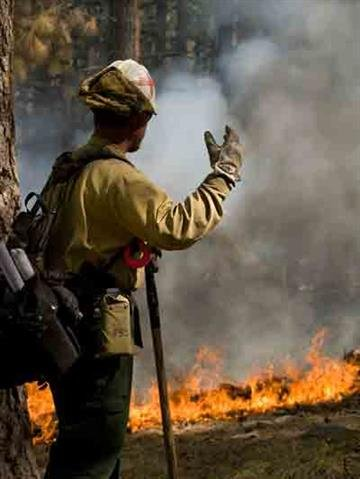 Firefighters look on as the Gladiator Fire burns. By Andrew Michalscheck