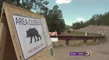 The Ponderosa, Christopher Creek and Sharp Creek campgrounds are closed following three bear attacks near Payson. By Jennifer Thomas