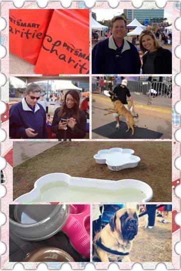 PETSMART Pet's Walk 2012 at Tempe Town Lake By Christina Duggan