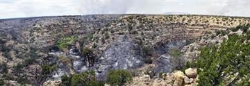 Panoramic shot of Jacks Canyon near the climbing area, a popular destination for rock climbers around the nation. Photo taken July 2. By Jennifer Thomas