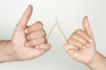 Make a wish on a wishbone By Catherine Holland
