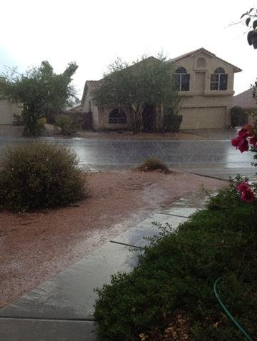 Rain at 12th Street and Union Hills Dr. By Mike Gertzman