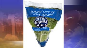Tanimura & Antle voluntarily recalled one lot of romaine lettuce because it may be contaminated with E. coli. By Jennifer Thomas