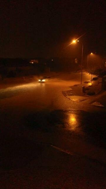 Picture taken at W. Whyman and 103rd Ave By Catherine Holland