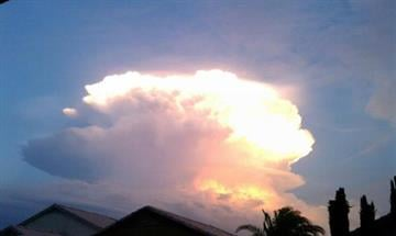 Chandler -- Was in the backyard with my kiddos and saw this, had to snap a few pics! By Catherine Holland