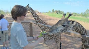 Darrin Grandmason swabs the tongue of Jambo the giraffe to collect DNA. By Jennifer Thomas