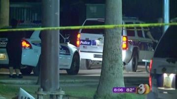 Police have made an arrest in the death of a 16-year-old boy who was shot while trying to prevent an armed robbery in a Phoenix park Thursday evening. By Catherine Holland