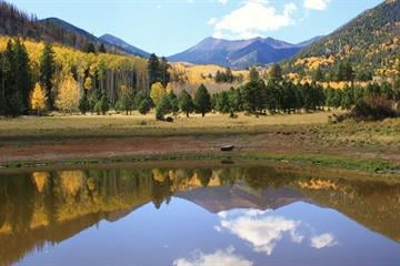 Lockett Meadow in Flagstaff, Ariz. By Mike Gertzman