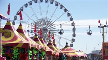 Zip lines, giant bugs and racing pigs are among the attractions on tap as the Arizona State Fair kicks off its yearly run in Phoenix. By Catherine Holland