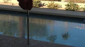 Frozen pool in Sun City West, Ariz. By Mike Gertzman