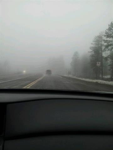 Low visibility in Heber-Overgaard. By Andrew Michalscheck