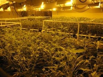 A marijuana grow operation was found in a garage in Golden Valley. By Jennifer Thomas