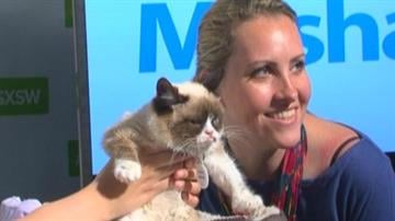 "An Internet sensation was a huge hit at this year's South by Southwest Interactive festival in Austin, Texas. People were thrilled to meet Arizona's ""Grumpy Cat"" in person. By Mike Gertzman"