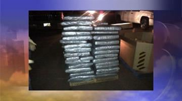 More than 1,200 pounds of marijuana was discovered hidden in a truckload of squash. By Jennifer Thomas