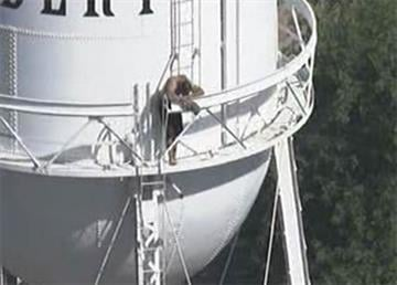 Man on Gilbert water tower near Gilbert and Elliot roads By Jennifer Thomas