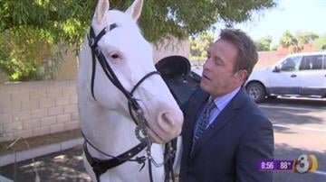 """Scott Pasmore and Silver from """"The Lone Ranger"""" By Jennifer Thomas"""
