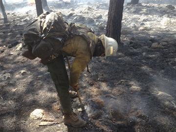 Wild Bill Fire By Jennifer Thomas