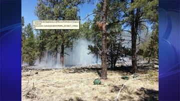 Picture of Echo Fire taken at 2 p.m. on June 17 By Jennifer Thomas