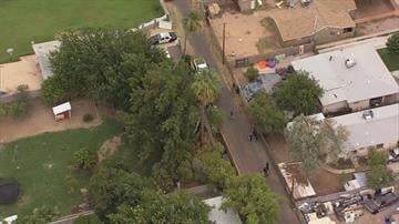 A man was killed while trimming palm trees in the area of Main Street and Horne in Mesa. By Jennifer Thomas