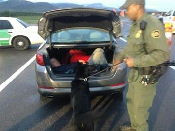 Illegal Immigrants in trunk By Erin Kennedy