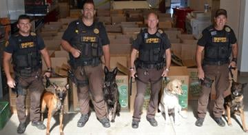 The YCSO K-9 team: (Left to right) Deputy Eric Lopez, Deputy Jarrod Winfrey, Sgt. Victor Dartt and Deputy Randy Evers with the boxes of packaged marijuana By Jennifer Thomas