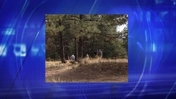 A woman's body was found in the area of South Herold Ranch Road in Flagstaff. By Jennifer Thomas