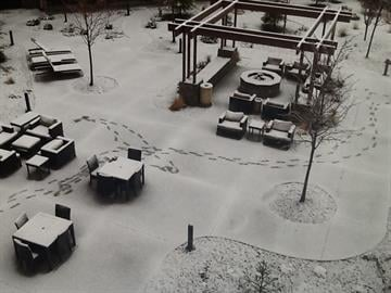 Snow At The Courtyard Marriott Flagstaff By Catherine Holland