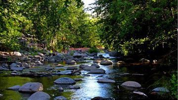 Wet Beaver Creek By Christina O'Haver