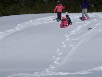 Wing Mountain Snow Play area in Flagstaff, Ariz. By Mike Gertzman