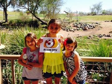 At the Phoenix Zoo By Catherine Holland