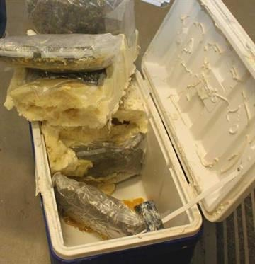Processed marijuana was found inside an ice chest. By Jennifer Thomas