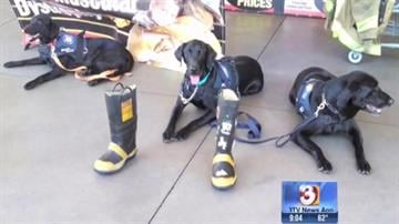 Two specially trained dogs and their handlers from Phoenix Fire Arizona Task Force 1 will head to Washington State Thursday morning to help in the aftermath of the deadly mudslide. By Christina O'Haver