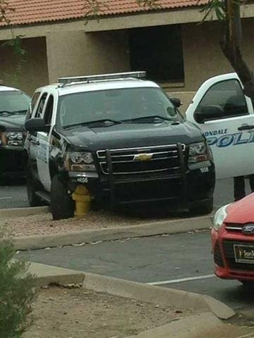 An Avondale animal control officer was arrested Wednesday for allegedly driving under the influence. By Jennifer Thomas