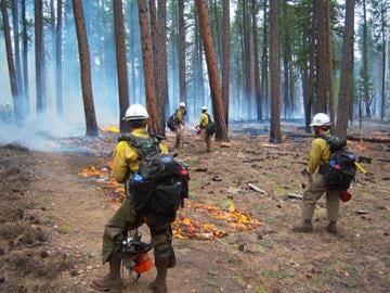 May 29: Firefighters were able to burn out along the handline from the canyon rim, around the cabin and tie into the W-4 road to confine the fire in that area. By Jennifer Thomas