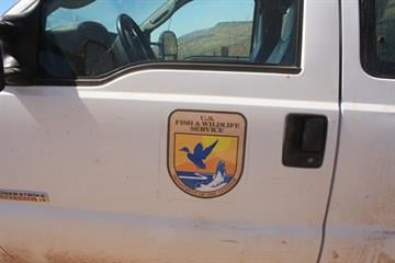 Attempt to clone Fish and Wildlife decal (photo courtesy of Customs and Border Protection) By Jayson Chesler