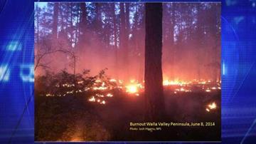 Burnout operations Walla Valley Peninsula June 7 By Jennifer Thomas