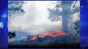 Belknap Fire By Jennifer Thomas
