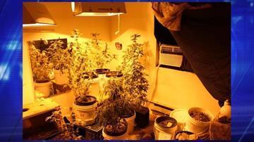 Marijuana-growing operation in Prescott Valley By Jennifer Thomas