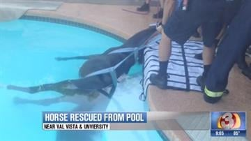 By Mike Gertzman