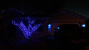 I put my lights up in support 1/1/15 and plan to keep my porch lights blue throughout January. Anything to bring attention to the cause. By Catherine Holland