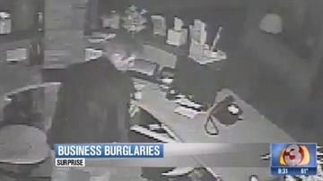 Image from surveillance video (Source: Surprise Police Department)
