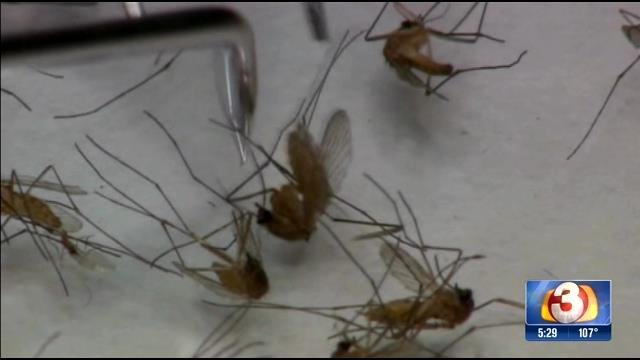 The first presence of West Nile virus this season has been detected by county officials. 1 May 2017 [Source: 3TV / CBS 5]