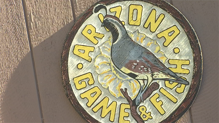 Fishing tournaments temporarily suspended on apache for Az game and fish dept