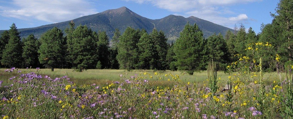 Here Its Summer All Time >> High Country Heat Has Flagstaff Ever Hit 100 Weather Blog