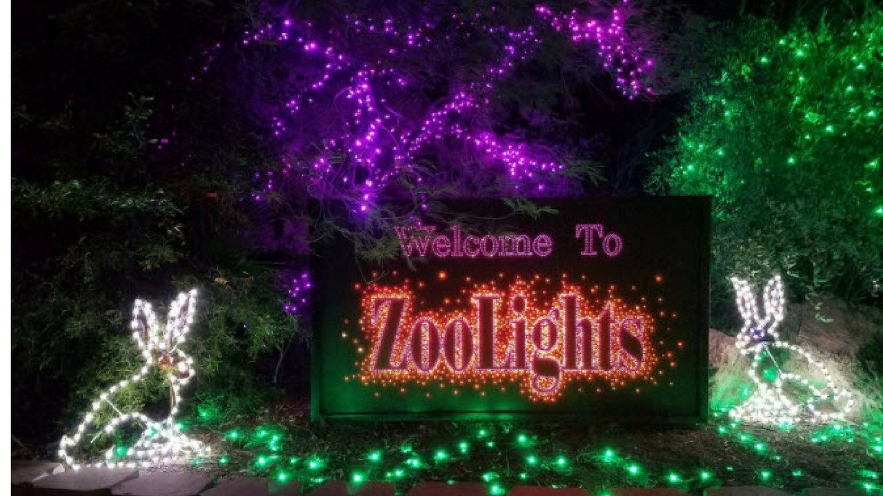 Phoenix Zoo Lights Up The Holiday Season With ZooLights  - Phoenix Zoo Christmas Lights