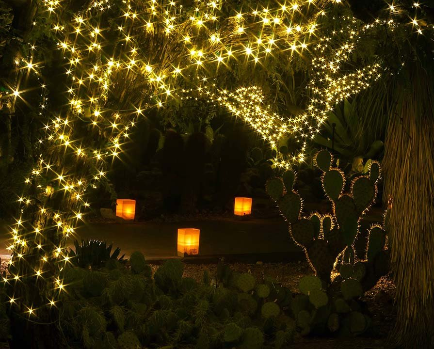 Link To Slideshow: Slideshow: Las Noches De Las Luminarias At Desert  Botanical Garden
