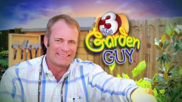 Nice Garden Guy Explores Lighting Alternatives At Home And Garden Sho   3TV |  CBS 5
