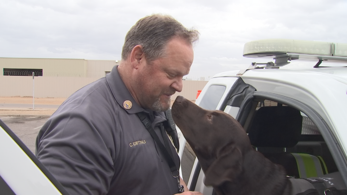 Ranger joined the Glendale Parks and RecreationDepartment late last year, mainly as a mascot, but his role has since expanded. (Source: 3TV/CBS 5)