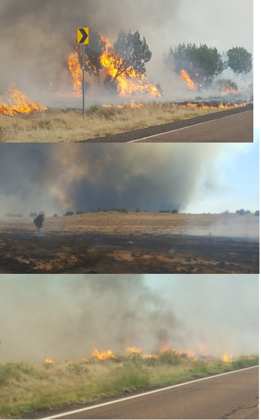 A Type 3 Team has been ordered to fight the flames, NCSO said. (Source: Navajo County Sheriff's Office)